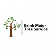 Brink Meier Tree Service – Professional Tree Care